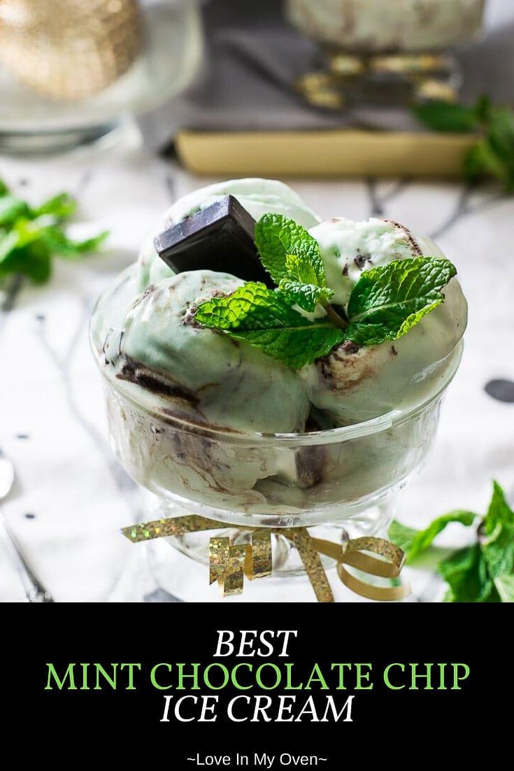 Best Mint Chocolate Chip Ice Cream