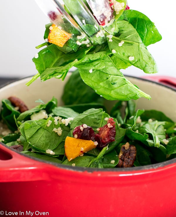 Roasted Butternut Squash and Cranberry Salad