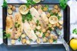 pan seared tilapia with lemon butter sauce