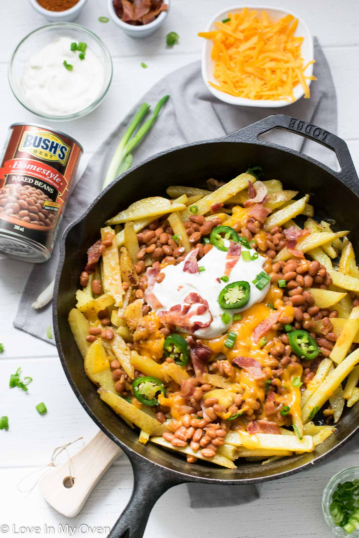skillet loaded cheese fries
